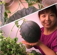 (株)恵葉&菜健康野菜